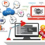 Improve Your Business with a Good CMS