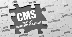 CMS development service