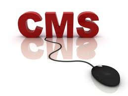 Myth or Fact: You Have Total Control on Website by Using CMS