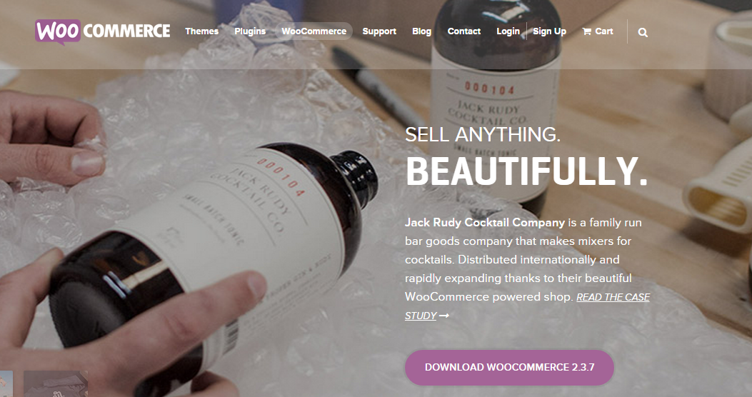 WooCommerce   a free eCommerce toolkit for WordPress
