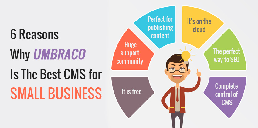 6 Reasons Why Umbraco Is The Best CMS for Small Business