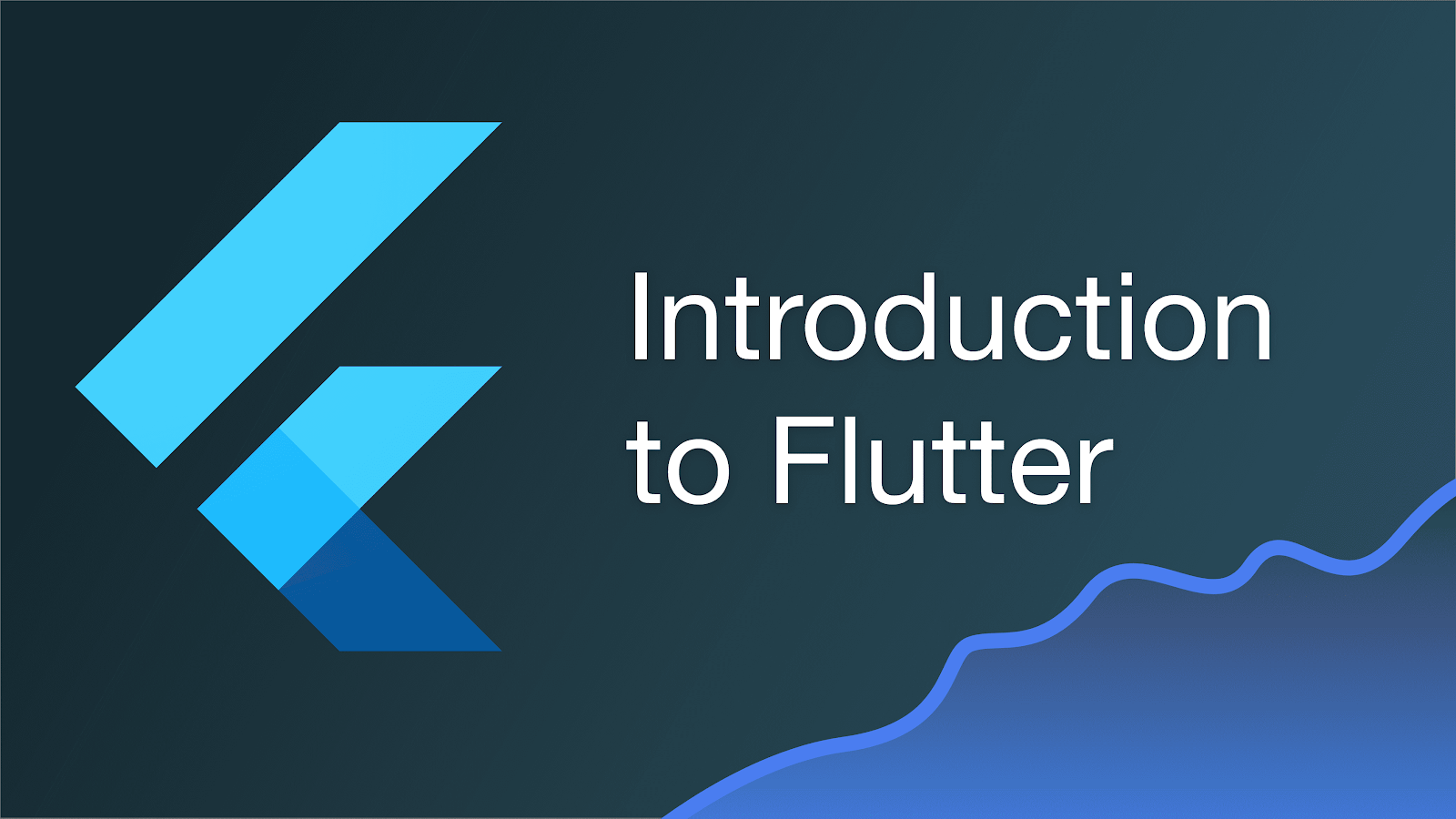flutter app introduction